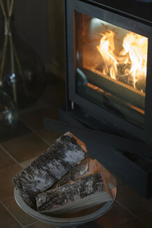 Firewood in front of fireplace - ALBF00818