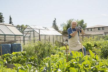 Portrait confident senior man in sunny vegetable garden - HEROF28739
