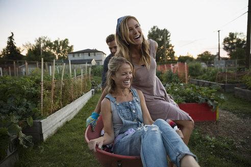 Playful women riding in wheelbarrow in garden - HEROF28754