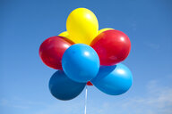 Multi-Colored Balloons - MINF10623