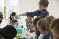 Boys and girls conducting science experiment dining table - HEROF29759