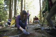 Volunteers planting trees in woods - HEROF29928
