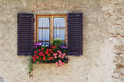 Colorful Flowers in Window Flower Box - MINF10928
