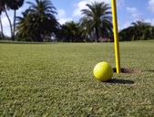 Golf Ball Lying Next to the Hole - MINF10943
