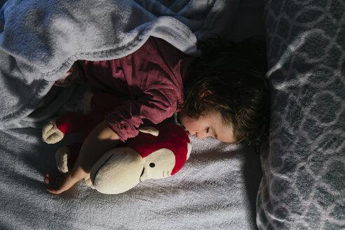 Toddler girl sleeping in bed with a soft toy dog orang-utan - GEMF02909