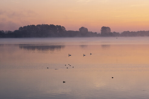 Germany, Bavaria, Ismaning reservoir, Pliening, sunrise - SIEF08446