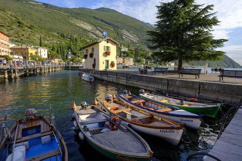 Italy, Trentino, Lake Garda, Torbole, old harbour, colored fishing boats - LBF02453