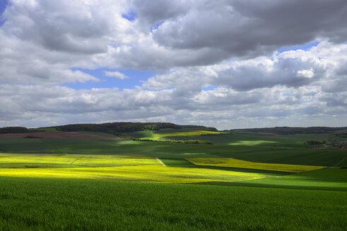 Germany, Bavaria, Franconia, Lower Franconia, Karsbach, valley of the Kuhbach - LBF02465