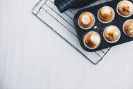Home-baked muffins in muffin tray on cooling grid - ERRF00806
