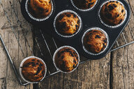 Home-baked muffins with chocolate chips in muffin tray on cooling grid - ERRF00821