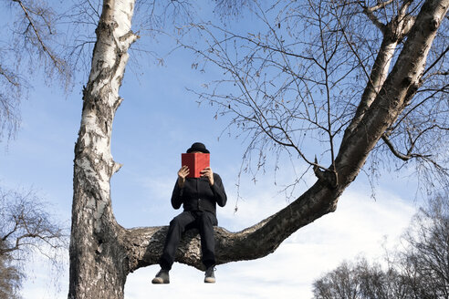 Man sitting in tree reading book - PSTF00352