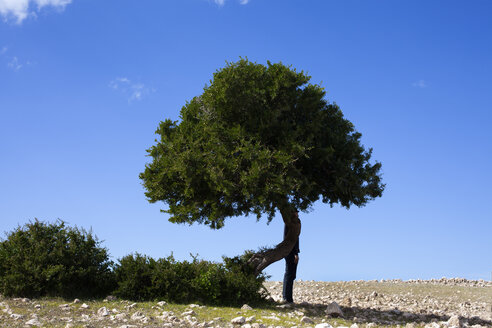 Morocco, Sidi Kaouki, man wearing a bowler hat standing behind a a tree - PSTF00421