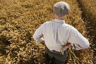 Farmer standing in wheat field - JUIF00496
