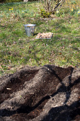 Prepared bed, potatoes and bucket in the background - NDF00876