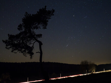 Germany, Bavaria, Nabburg, starry sky with tree and light trails - HUSF00030