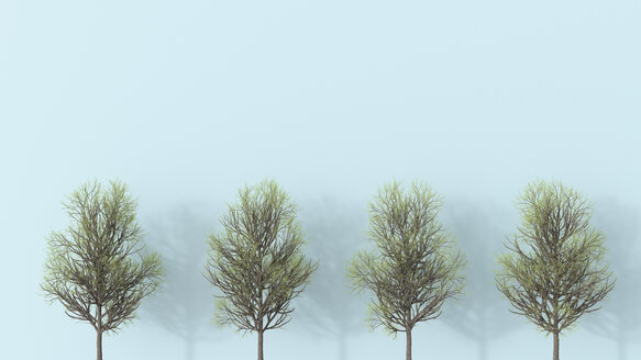 3D rendering, Row of bare trees - UWF01535