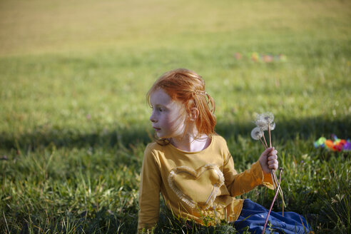 Redheaded girl sitting in field with blowball - GAF00123