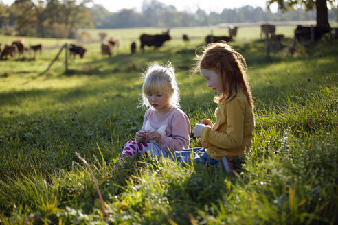 Two sisters sitting in rural field - GAF00126