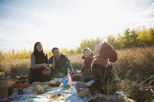Family enjoying picnic in sunny autumn field - HEROF33244