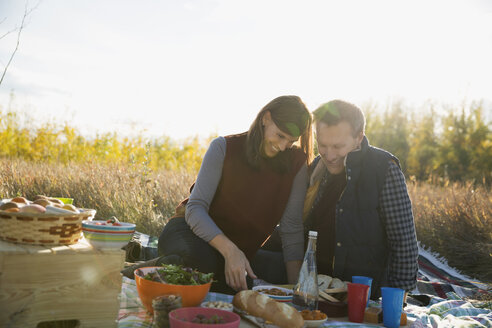 Couple enjoying picnic in sunny field - HEROF33247
