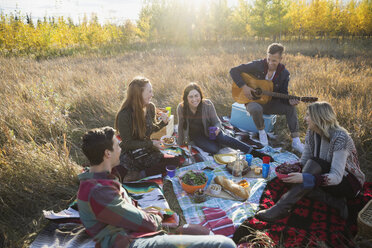 Friends hanging out enjoying picnic in sunny field - HEROF33280
