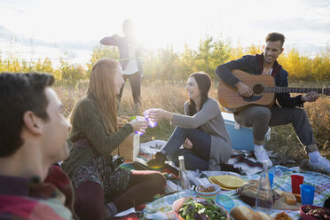 Friends hanging out enjoying picnic in sunny field - HEROF33283
