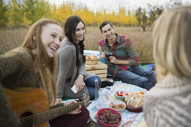 Friends enjoying picnic in field - HEROF33286
