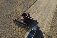 Aerial view combine harvester and trailer harvesting sunny crop - HEROF33340