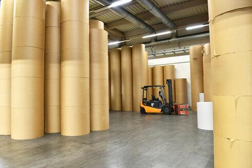 Printing shop: paper rolls - SCHF00488