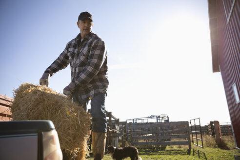 Male farmer moving hay bale on sunny farm - HEROF33691