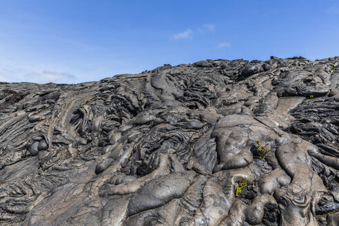 USA, Hawaii, Volcanoes National Park, lava fields along the Chain of Craters Road - FOF10529