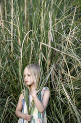 Portrait of blond little girl in front of Pampas grass - EYAF00088