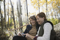 Friends using cell phone on hammock in woods - HEROF35278