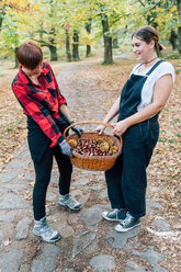 Best friends collecting chestnuts, Rezzago, Lombardy, Italy - CUF50038