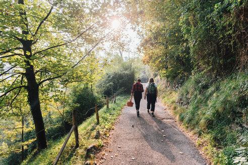 Friends walking in countryside, Rezzago, Lombardy, Italy - CUF50094