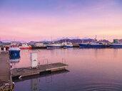 Iceland, Hoefn, harbor at sunrise - TAMF01253