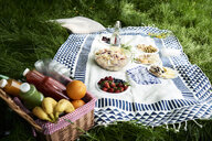 Healthy picnic snacks on a blanket in grass - IGGF00977