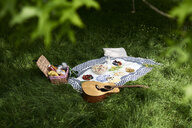 Healthy picnic snacks and a guitar on a blanket in a park - IGGF00983