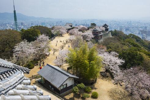 Japan, Shikoku, Matsuyama, view from Matsuyama castle at cherry blossom - RUNF01797