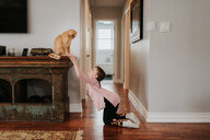 Girl playing with cat at home - ISF21190