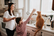 Mother watching daughter play with cat on kitchen worktop - ISF21229