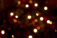 Defocused lights of a Christmas tree - JTF01212