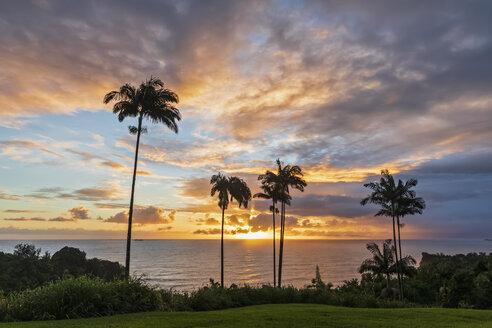USA, Hawaii, Big Island, Onomea Bay at sunset - FOF10619