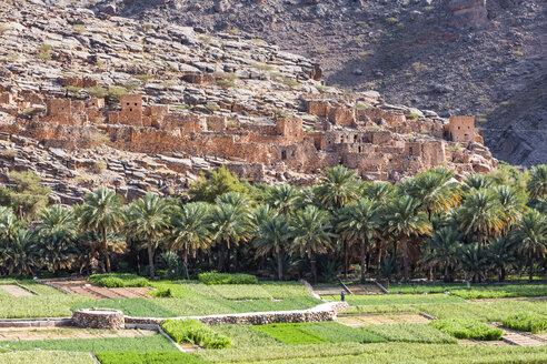 Al Hamra and fields, Ad Dakhiliyah, Oman - WVF01195