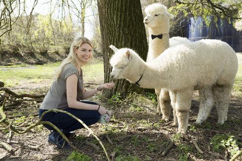 Portrait of happy woman feeding alpaca - FLLF00100
