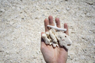 Australia, Queensland, woman's hand holding dead corals on the beach near the Great Barrier Reef - GEMF02914