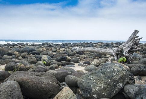 Hawaii, island of Molokai, Halwa Bay, huge stones on the Halawa beach - RUNF01867