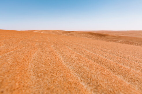Sultanate Of Oman, Wahiba Sands, dunes in the desert - WVF01309