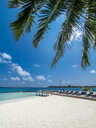 Maledives, Ross Atoll, beach loungers at the beach - AMF06900