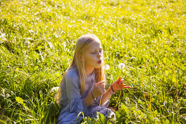 Girl sitting in field with blowball - HSIF00543